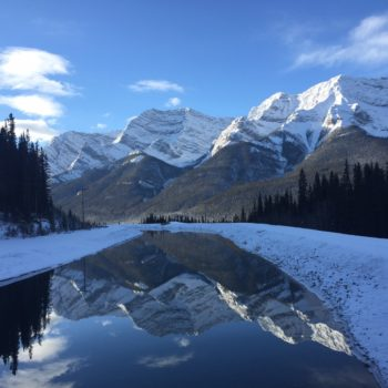 Dear Canmore